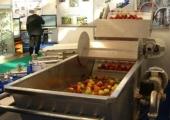 Вентиляторная барботажная моечная машина, мойка овощей